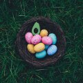 Quick belated Happy Easter Hope everyone had a good one.