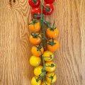 Look at this lovely rainbow of colours Its BTF20 this week and next, check out the britishtomatoes site and find loads of info and gorgeous recipes.